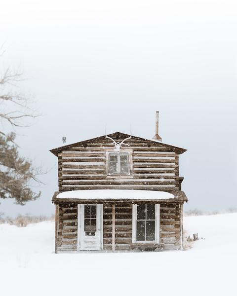 Historic Yellowstone Cabin