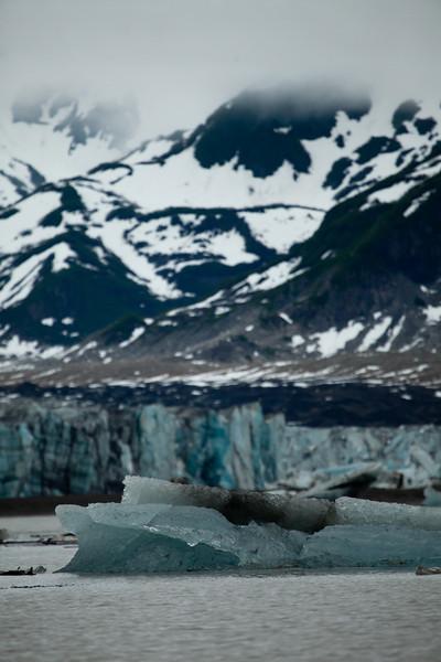 Alaska Copper River-9657.jpg