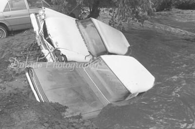New Arrivals: Hurricane Agnes (1972)