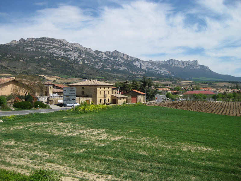 From Bai Gorri vineyard, Logroño - Johanna Frymoyer *12