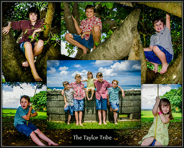The Taylor clan