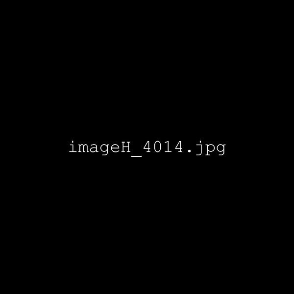 imageH_4014.jpg