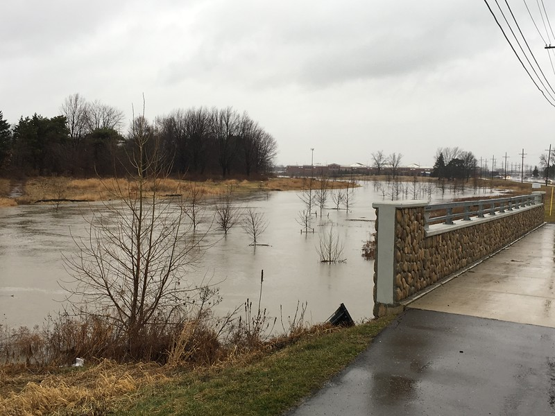 The old Partridge Creek golf course/Gloede Drain on the west side of Romeo Plank south of Hall Road in Clinton Township. Jamie Cook / Macomb Daily