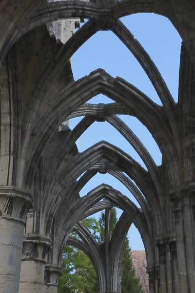 Ourscamp Abbey Ribbed Vaults
