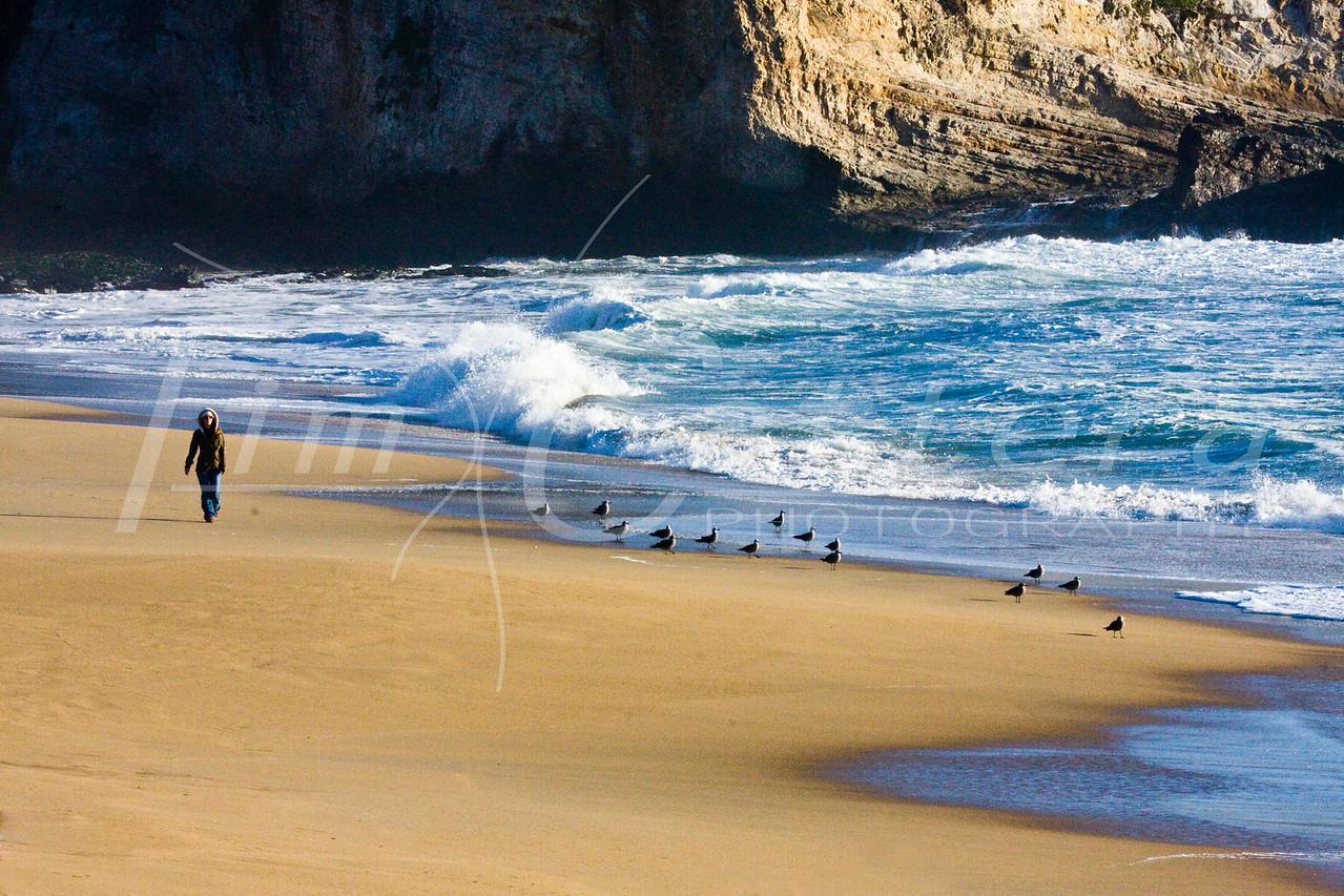 Just a walk on the beach<br /> Laguna's, Santa Cruz, Ca.