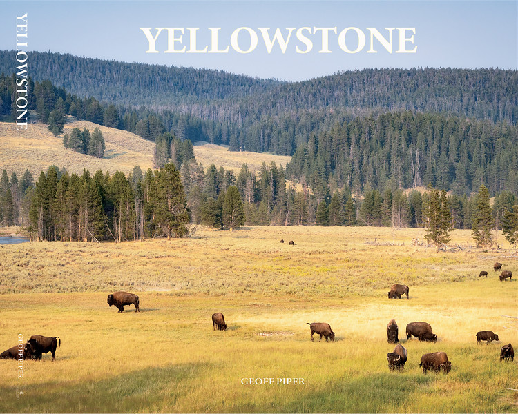 Yellowstone Cover