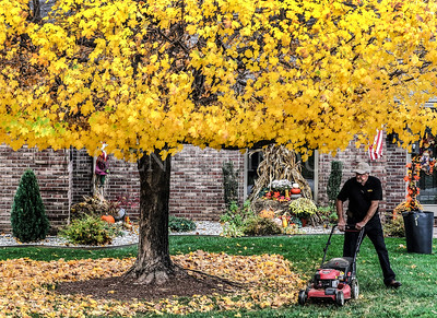 Mulching leaves - 11-12-20 - Messenger-Inquirer