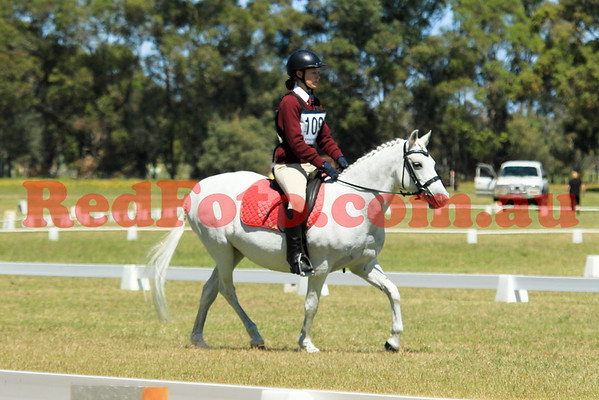 2014 11 15 Capel Pony Club ODE Dressage 09-00 till 10-00