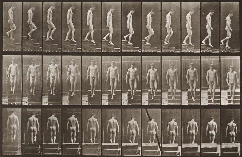 Nude man descending stairs (Animal Locomotion, 1887, plate 125)