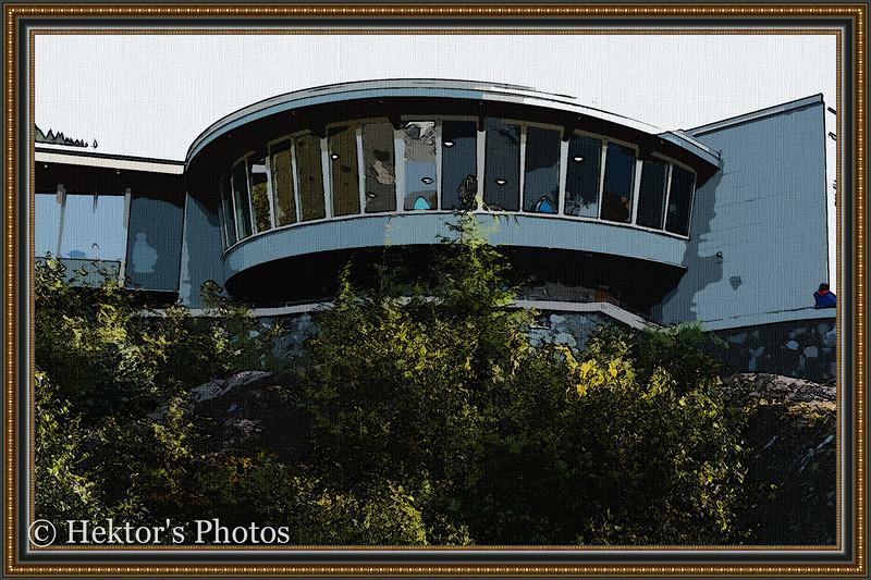 Mendenhall Glacier Excursion-12.jpg