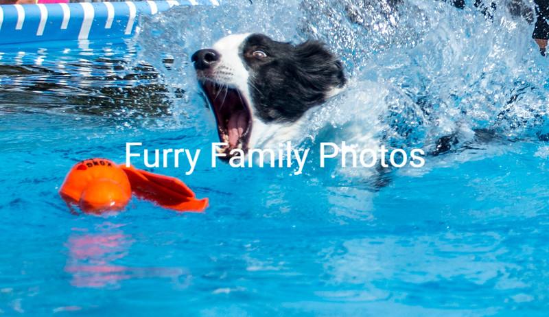 Splash #3