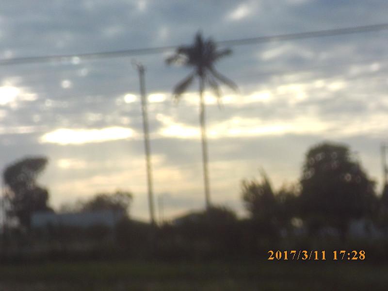 SUNP0642.JPG
