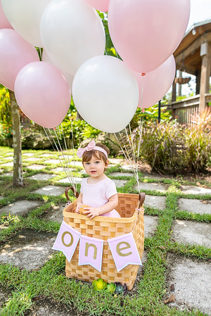 Amelia Toledo First Birthday