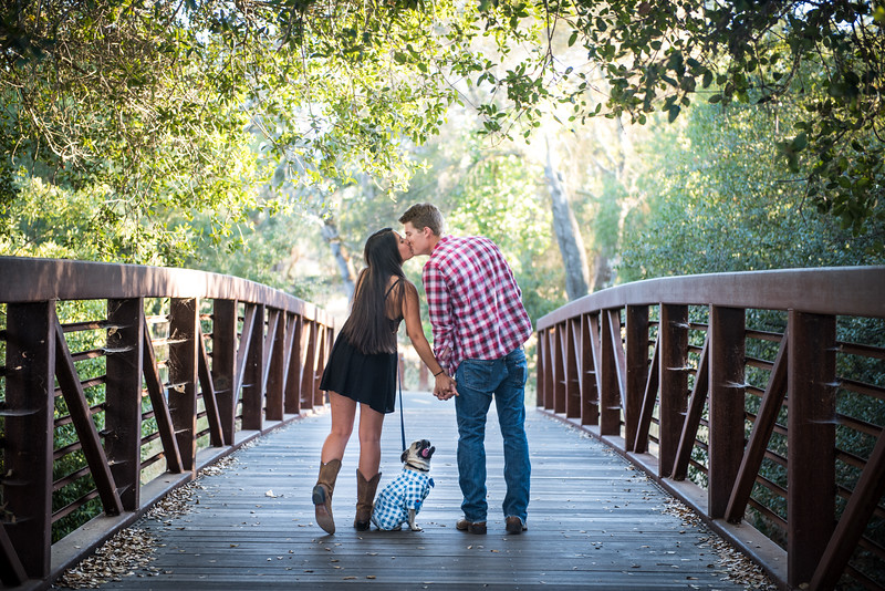 Jordan and Alex's Engagement Portraits- 8x10