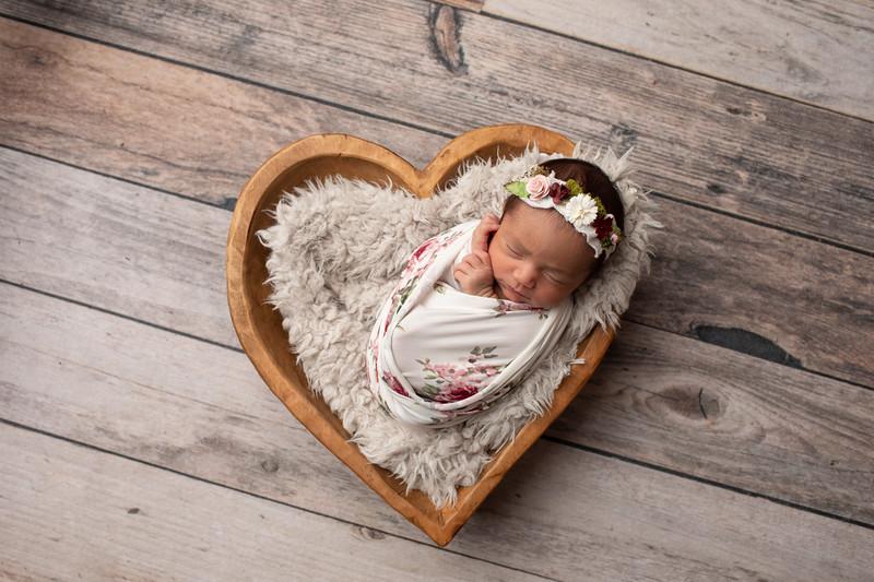 Baby Victoria-5.jpg