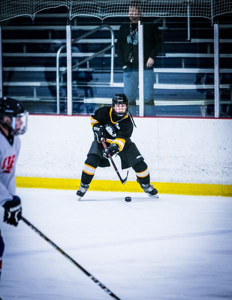 Bruins2-305.jpg