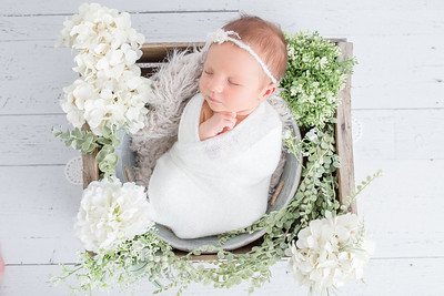 Payton Newborn