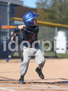 Rec Baseball 2017