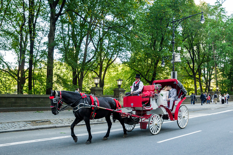 Central Park Wedding - Jessica & Reiniel-371.jpg