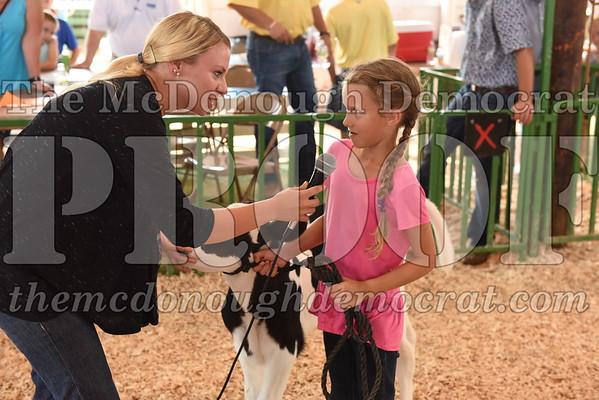 Bucket Calf Show 07-11-17