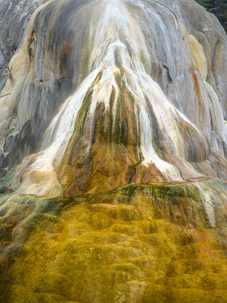 Orange Mound Spring, Mammoth Hot Spring, Yellowstone NP