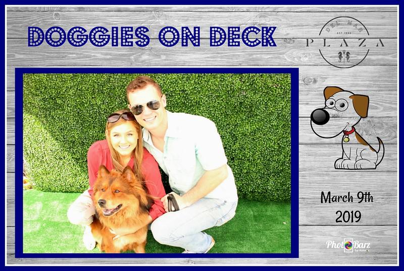 Doggys on Deck2.jpg