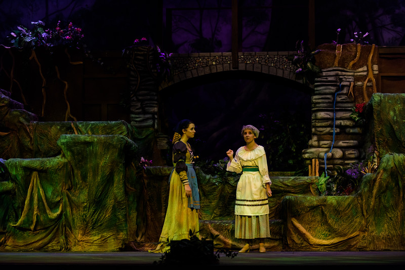 20150423 Into the Woods8879.jpg