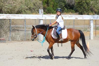Horse Camp 2014