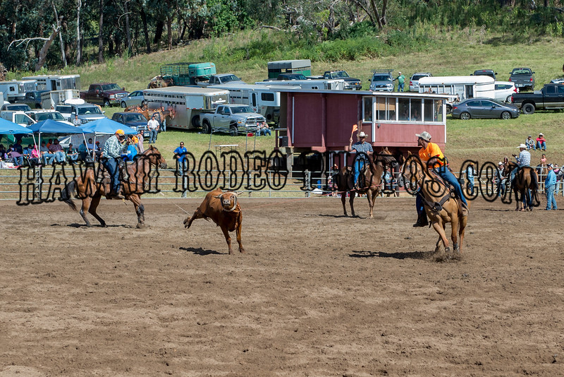 TIMMY'S MEMORIAL ROPING AUGUST 1-2 2015