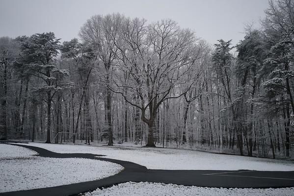 Photo Class - Snow 3-4-16
