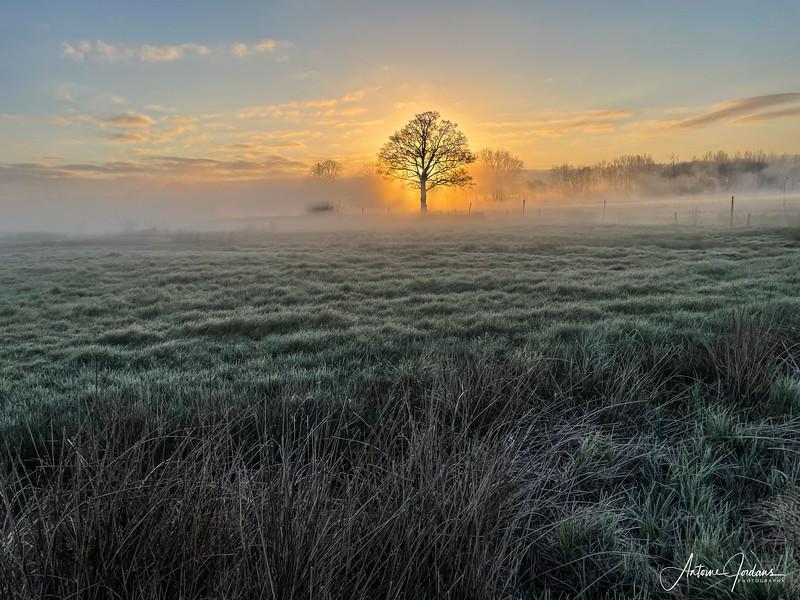 Sunrise during morning walk