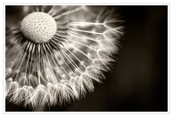 2012-05-21 Blog Posting