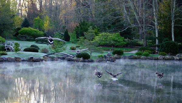 Dawes Arboretum 2012