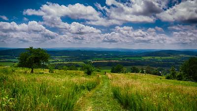 Scenic and Landscape