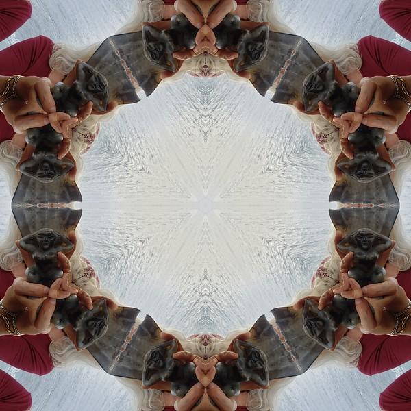 22656_mirror3.jpg