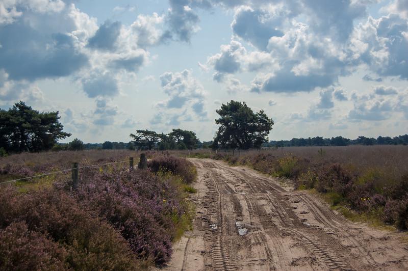 02 september 2017 Heidetocht 'De Wandelaar' te Achel & Gastel 16.jpg