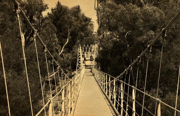 Week 14- Spruce Street Suspension Bridge