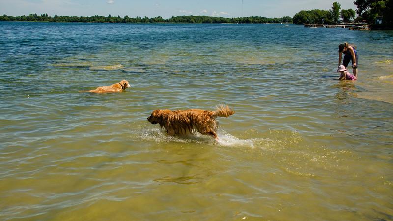 PuppyParty18-222.jpg