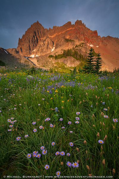Canyon_Creek_Meadows_Wildflowers_Sunrise_Storm_194.jpg