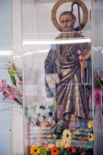 Statue of Saint Anthony, Sant Antoni market, town of Barcelona, autonomous commnunity of Catalonia, northeastern Spain