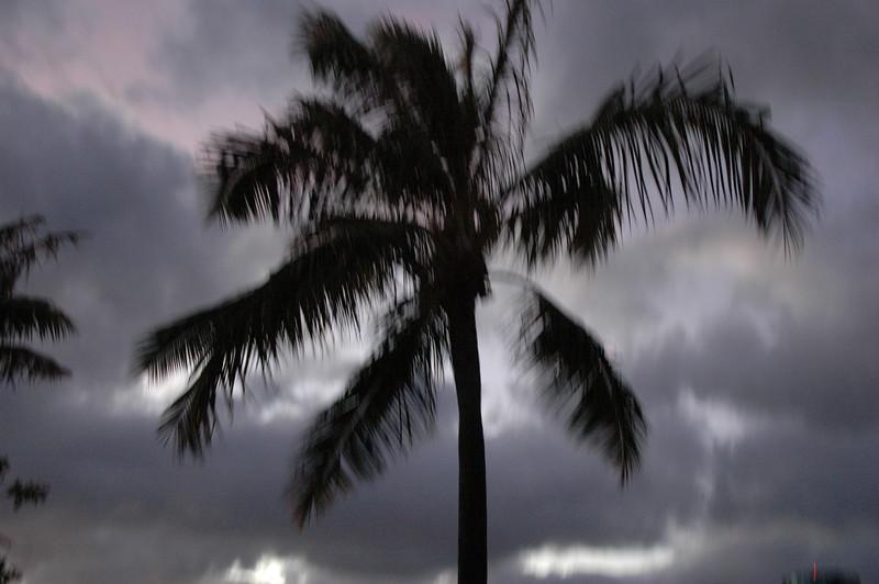 Hawaii - Ala Moana Beach Sunset-190.JPG