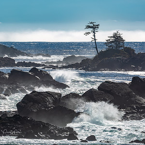 Black_Rock_Resort, Ucluelet, BC (Oct 2018)