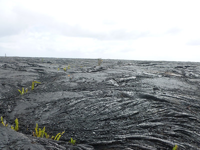Big Island - Lava Beach