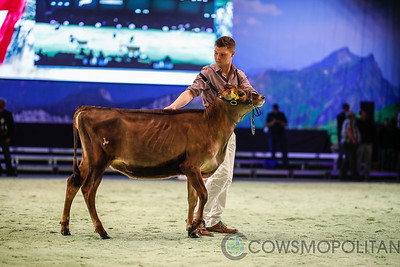 Swiss Expo Jersey Show 2018
