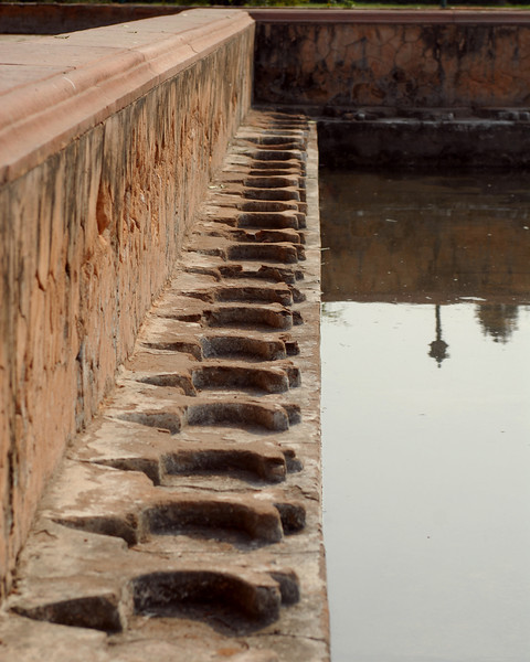 red fort pond detail 3.jpg