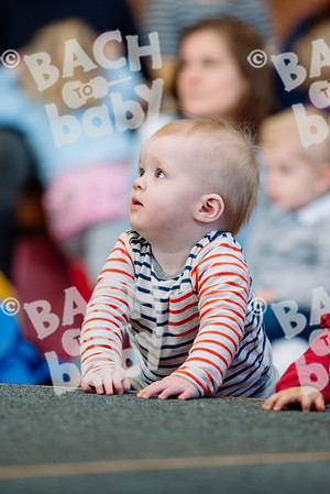 © Bach to Baby 2017_Alejandro Tamagno_Dulwich_2017-03-06 011.jpg
