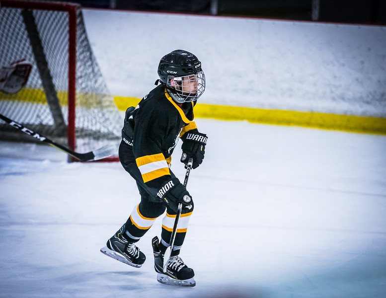 Bruins2-425.jpg