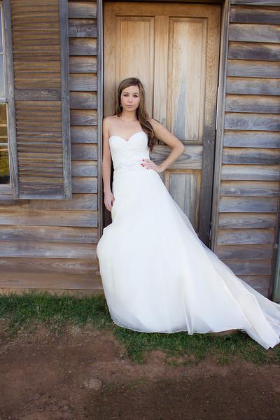 Ashley's Bridal Portraits