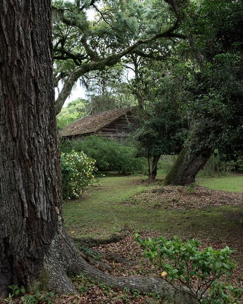 Louisiana, St. Francisville, The Rosedown Plantation