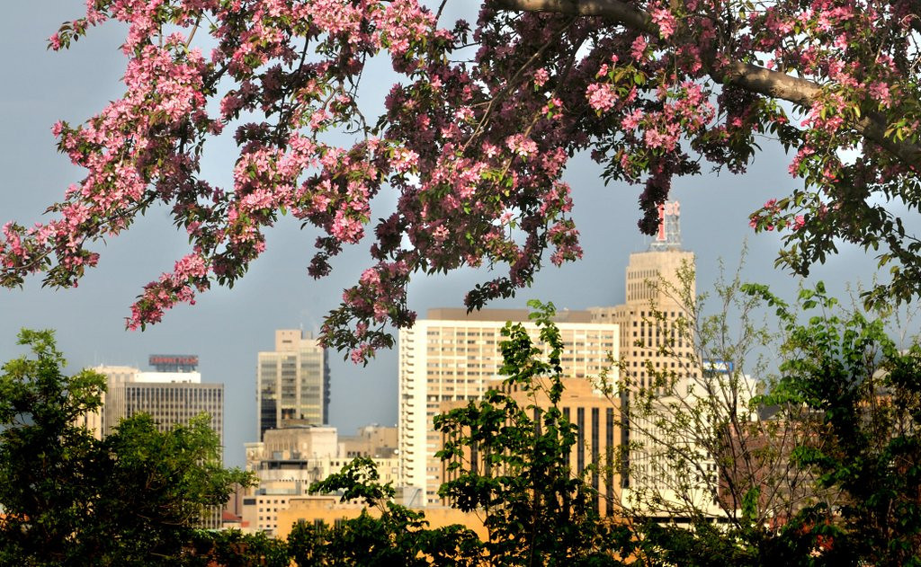 """. <p>3. (tie) ST. PAUL <p>Voted �Best Romantic North American Getaway� in most bogus election result since the 2008 Senate race. (unranked) <p><b><a href=\'http://www.twincities.com/life/ci_25018474/st-paul-voted-best-romantic-north-american-getaway\' target=\""""_blank\""""> HUH?</a></b> <p>   (Pioneer Press file photo)"""